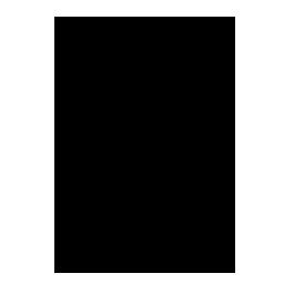 copy, quake icon