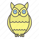 bird, chronotype, eveningness, nighttime, owl, sleep, wisdom icon