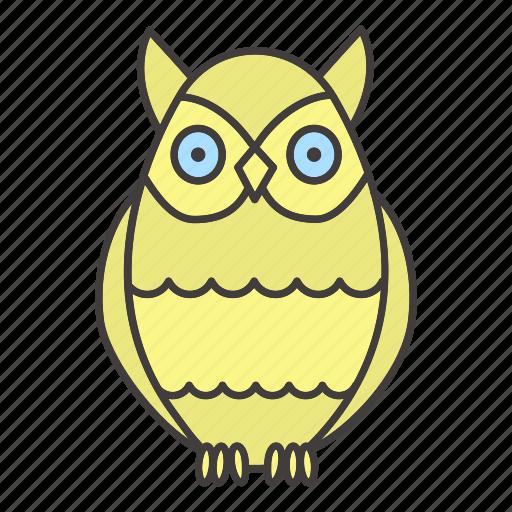 bird, chronotype, eveningness, nighttime, owl, sleep, wisdom icon