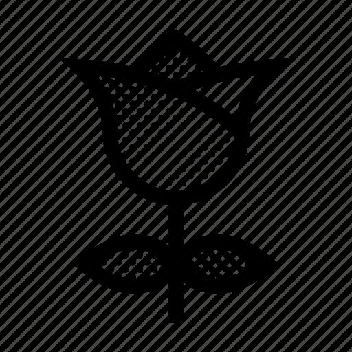 Flower, love, nature, rose, valentine icon - Download on Iconfinder