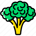 broccoli, cooking, food, gastronomy