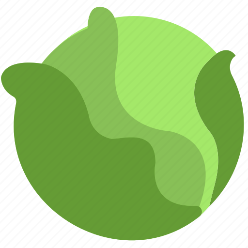 cabbage, cooking, food, gastronomy icon