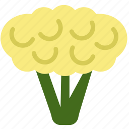 cauliflower, cooking, food, gastronomy icon