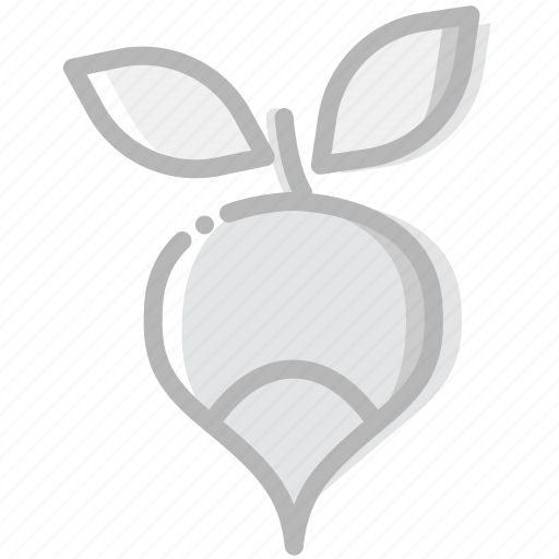 cooking, food, gastronomy, radish icon