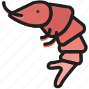 cooking, food, gastronomy, shrimp icon