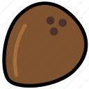 coconut, cooking, food, gastronomy icon