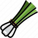 cooking, food, gastronomy, green, onions icon