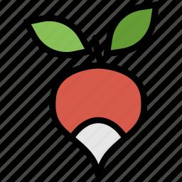 cooking, food, gastronomy, radish icon