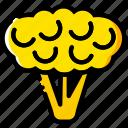 cauliflower, cooking, food, gastronomy icon