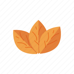 leaf, smoke, tobacco icon