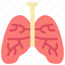 health, lungs, organs, smoking, vaping icon