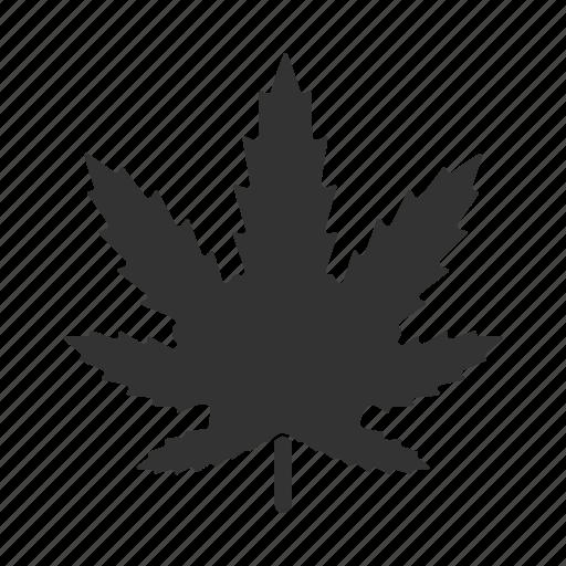 cannabis, drugs, leaf, marihuana, marijuana, plant, weed icon