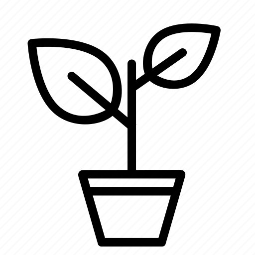 flowerpot, leave, nature, plant, pot, tree icon