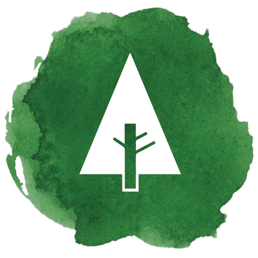 forrest, forrst, newtork, social, tree icon