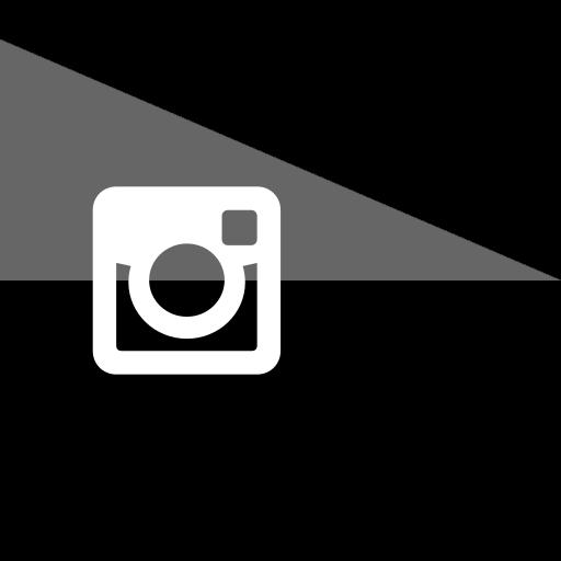 brand, company, flag, instagram, logo, media, social icon