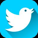 bird, tweet, twitter icon