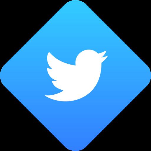 media, social media, twitter icon