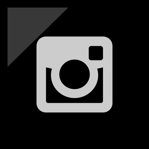 company, instagram, logo, media, social icon