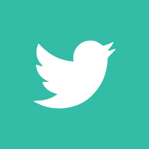 media, online, share, social, twitter icon