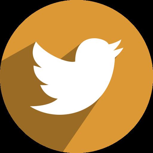 media, network, social, twitter icon