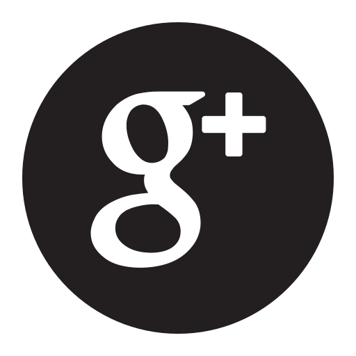 google, networks, plus, search, social, socialnetwork icon