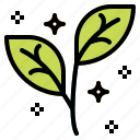 leaves, natural, plant icon