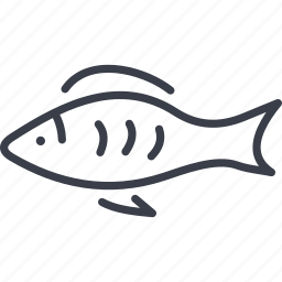 fish, sea fish, seafood, spain icon