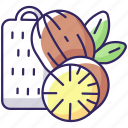 nutmeg icon, baking condiment, flavoring, nutmeg icon