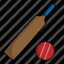 athlete, cricket, sport icon