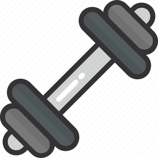 barbell, dumbbells, gym equipment, gymnasium, weight lifting icon