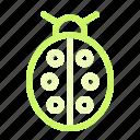 bug, insect, ladybug, nature, spring icon