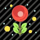 flower, macro, tulip icon