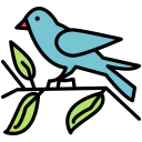 bird, fly, pet, sparrow icon
