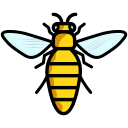 fly, honey, insect, bee icon