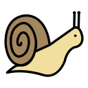 mollusc, slow, slug, snail icon