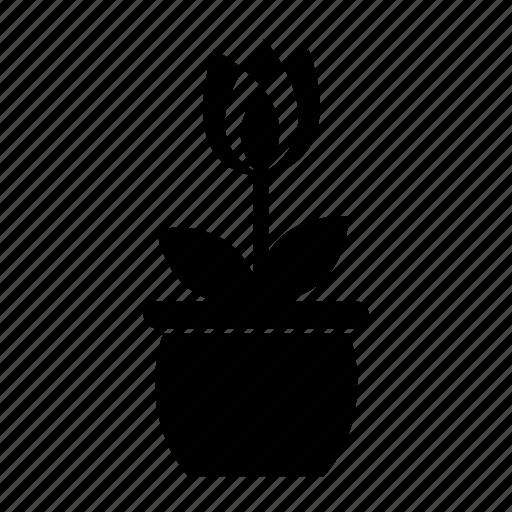 plant3 icon