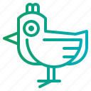 animals, bird, chick, chicken icon