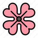 anemone, flower, spring icon
