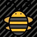bee, beetle, bug, insect, ladybird, ladybug icon