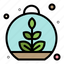growing, leaf, plant, spring icon