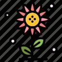 floral, flower, nature, spring, sub