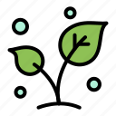 leaf, nature, spring, sprout, tree icon