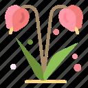 floral, flower, nature, spring