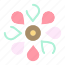 floral, flower, nature, spring, sun icon