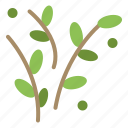 leaf, nature, plant, spring icon