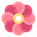 flower, nature, plent, spring icon