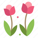 flora, flower, nature, rose, spring icon