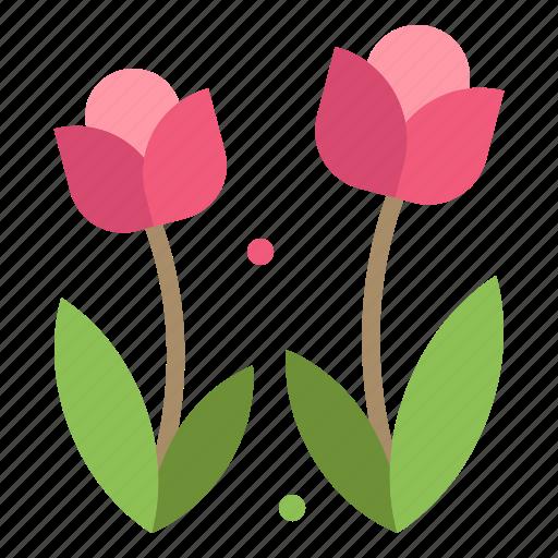 Flora, flower, nature, rose, spring icon - Download on Iconfinder