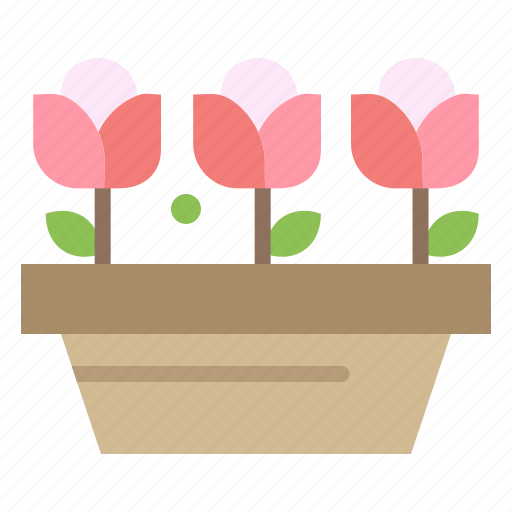 flower, growth, plant, spring icon