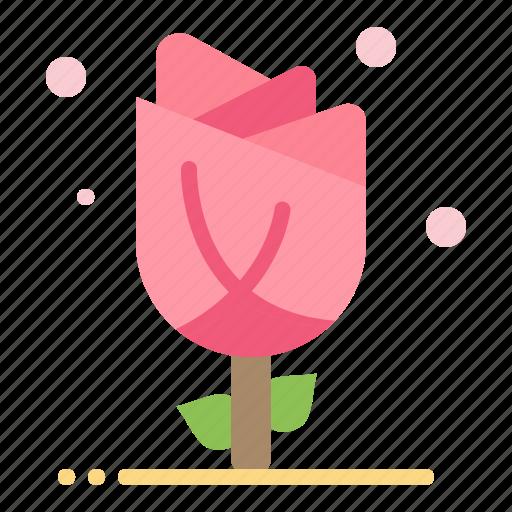 Flora, floral, flower, nature, rose icon - Download on Iconfinder